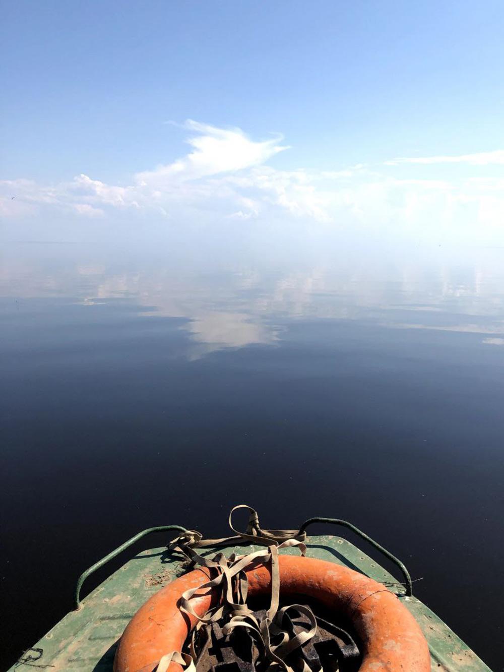 Летом на озере Ильмень бывают шикарные виды