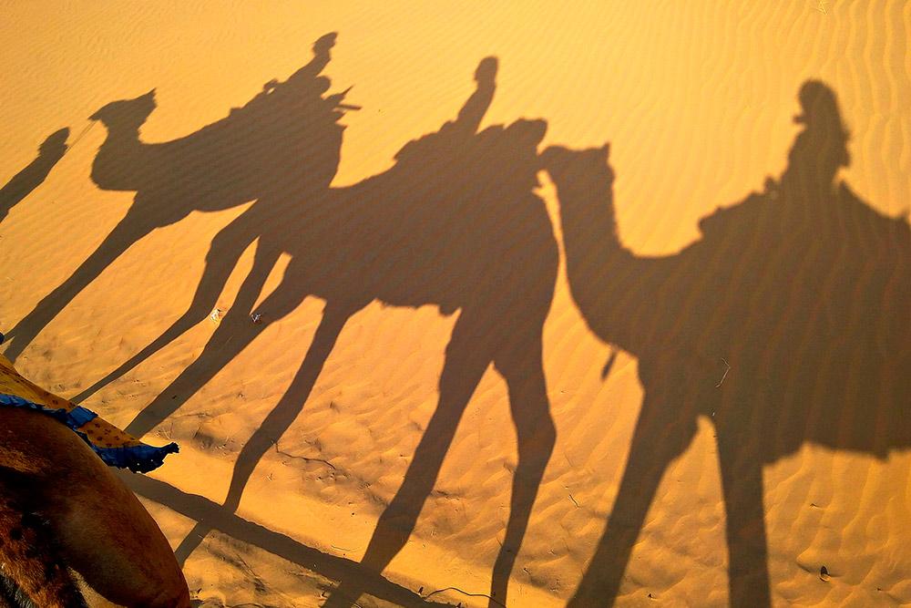 В пустыне мы ночевали среди дюн, под звездным небом