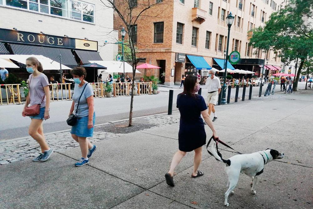 В городе очень много людей с собаками