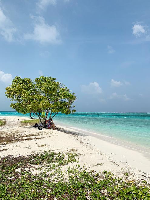 Пляж для местных жителей на острове Маафуши. По нему можно прогуляться в тишине и насладиться нетронутой природой и безлюдным океаном
