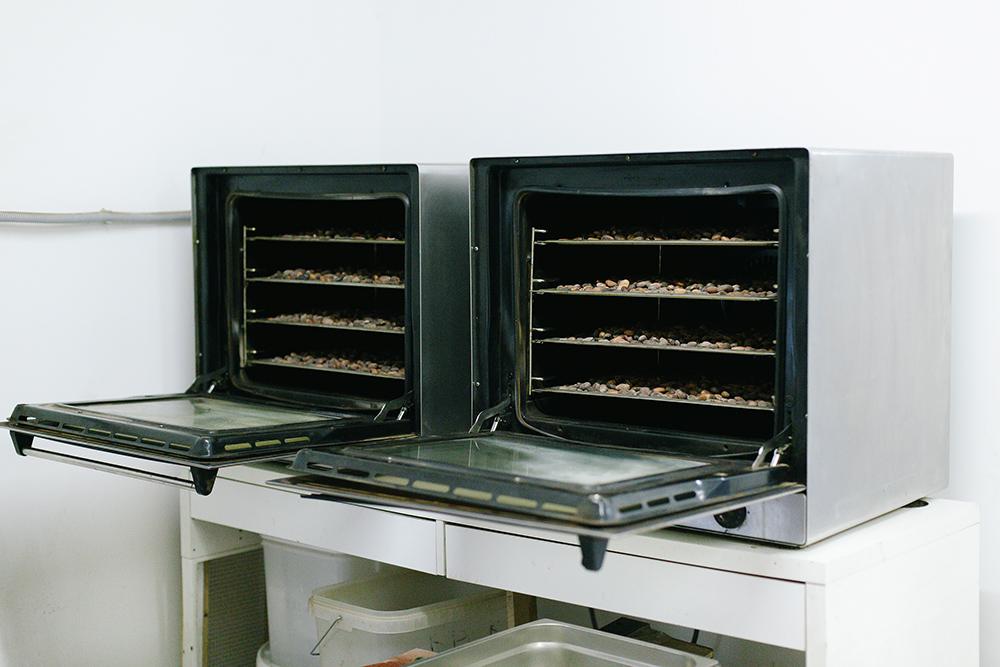 Разные режимы обжарки раскроют или уничтожат вкус, аромат и полезные свойства какао
