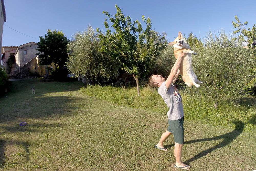 Развлекаемся с собакой на лужайке арендованного дома в окрестностях Сан-Марино