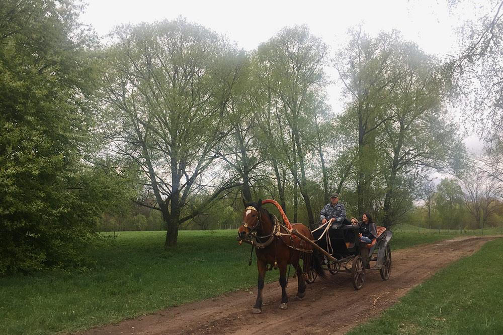Прокатиться в конном экипаже стоит 150<span class=ruble>Р</span> для взрослого и 80<span class=ruble>Р</span> для ребенка. Прогулка длится 10 минут