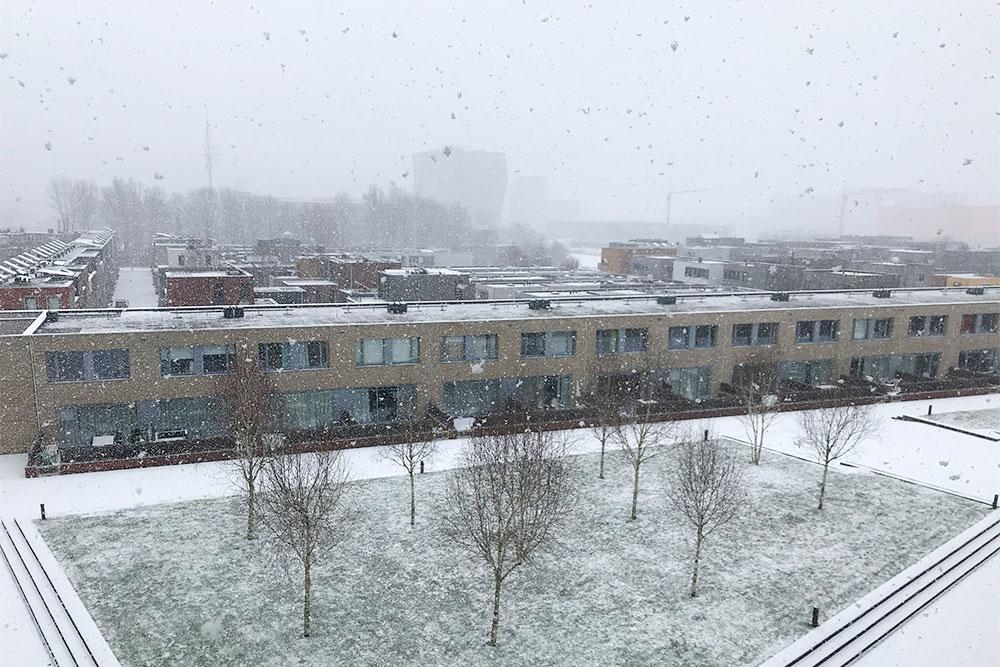 Внутренний двор нашего дома. Обычно снег тает через 2—3 дня