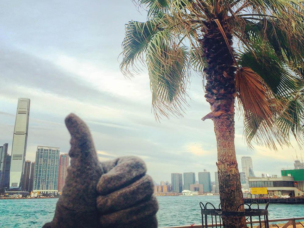Перчатки на фоне зеленых пальм — такой была гонконгская зима — 2015