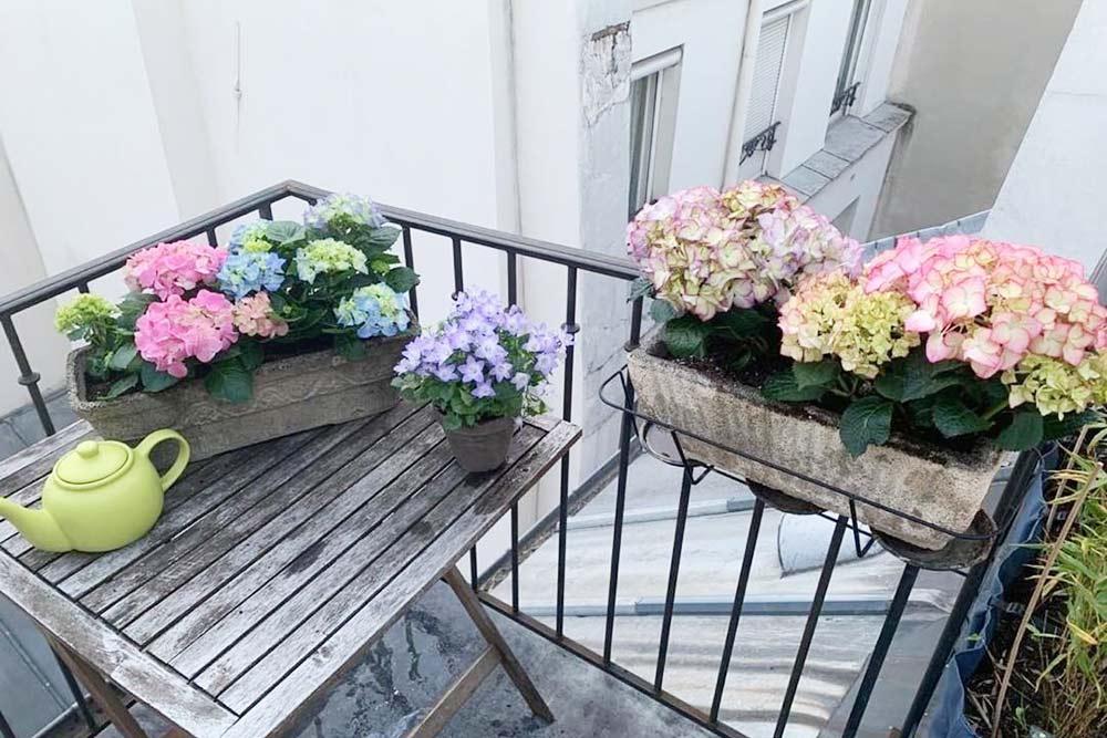 В нашей квартире есть милый маленький балкончик, выходящий в тихий и уютный внутренний двор