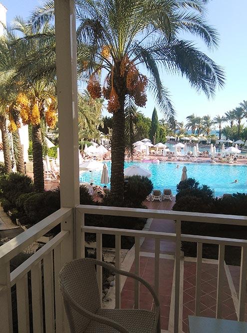 Нам достался номер с видом на бассейн