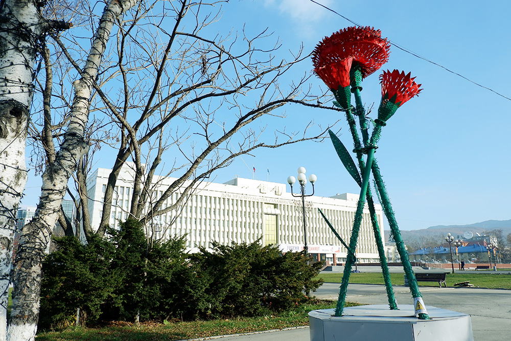 Здание правительства области и пластмассовые гвоздики-светильники