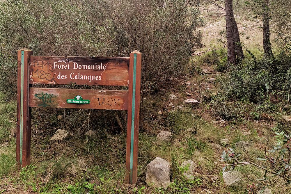 В 30 минутах езды от Марселя находится большой горный парк Каланки
