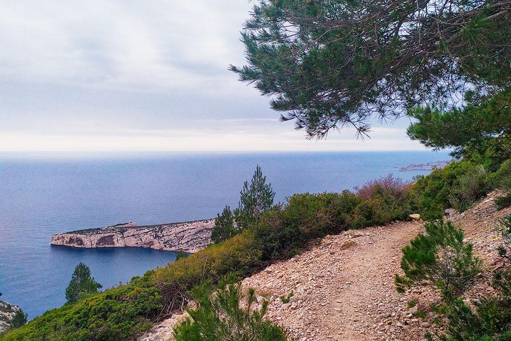 Через лес можно подняться на гору, чтобы полюбоваться красивыми видами на побережье с возвышенности
