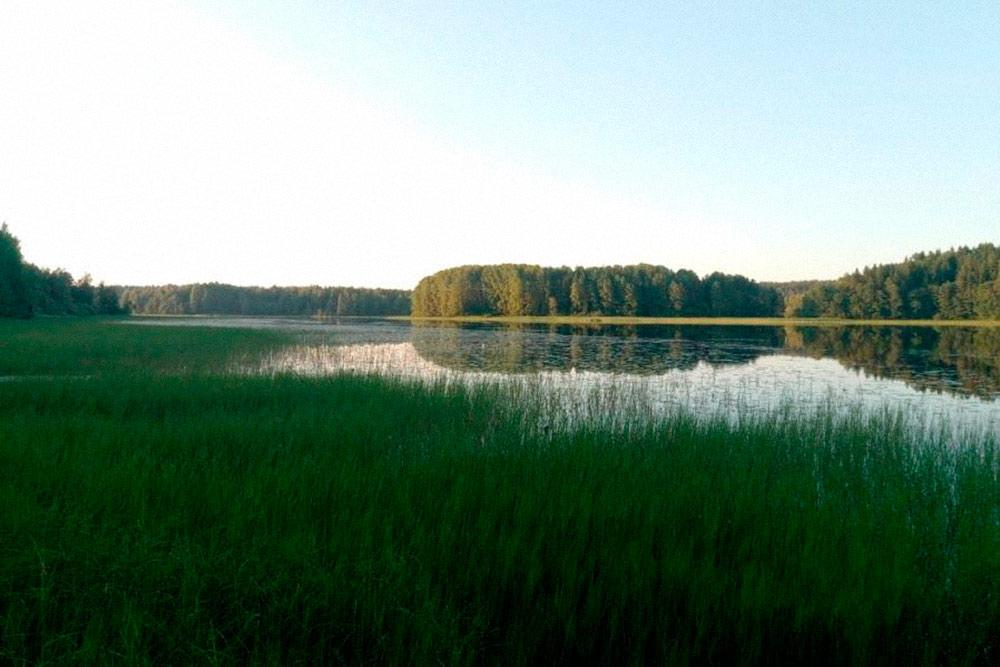 Это озеро летом. Берега зарастают травой — лодку спустить можно, а вот купаться все ходят на центральный пляж