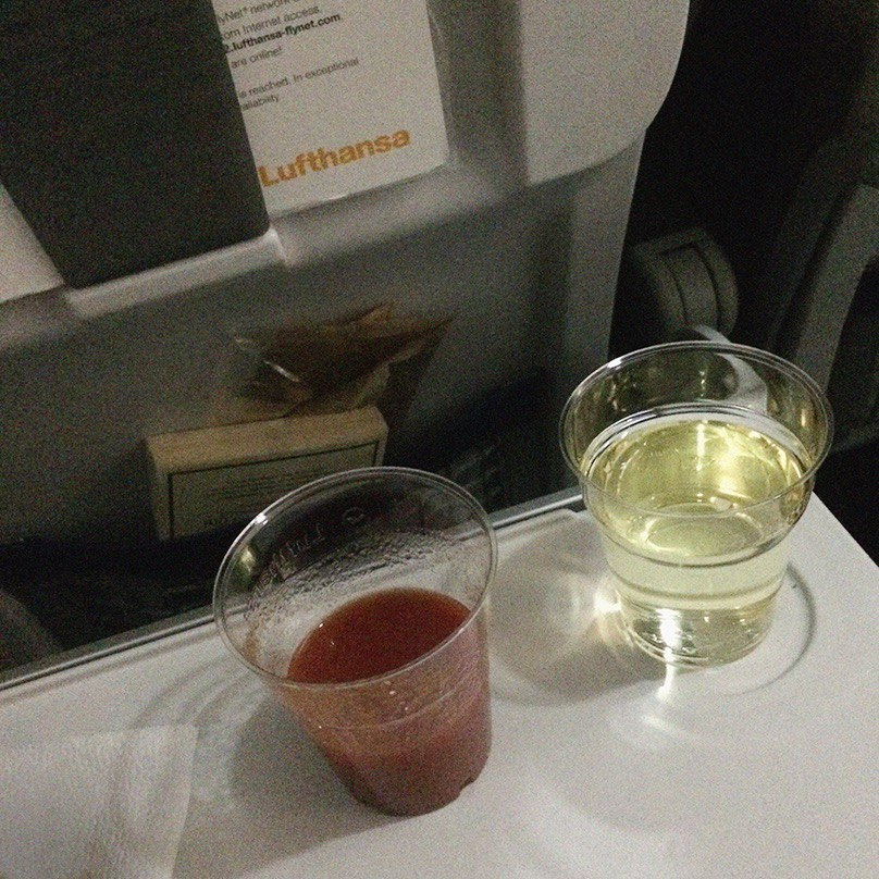 Вид из самолета на Альпы и бесплатное вино от «Люфтганзы»