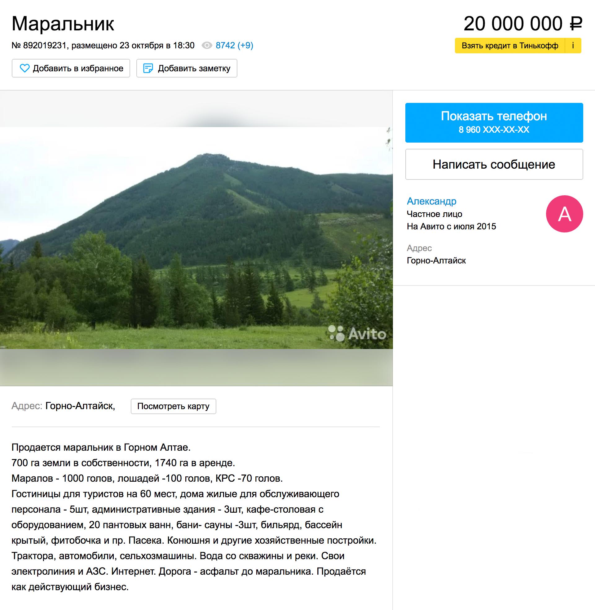 За 20 млн рублей можно купить маральник на Алтае. Марал — вид благородного оленя, рога которого — панты — являются ценным лекарственным средством. Объявление на «Авито»