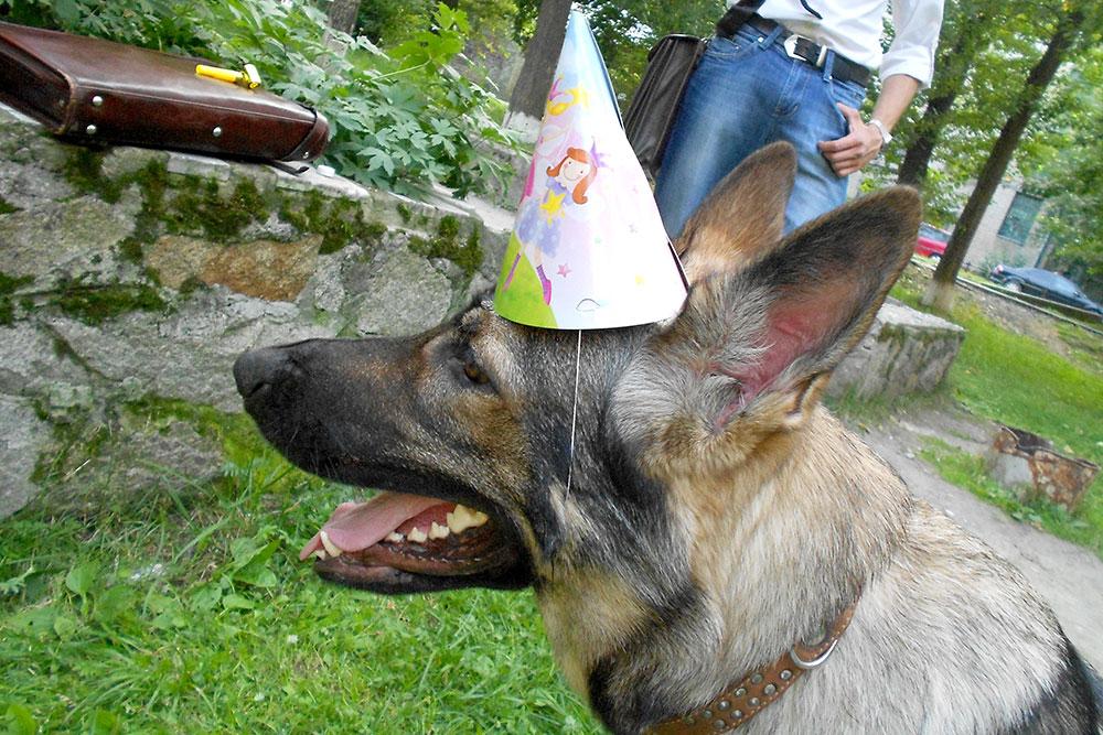 Между тренировками празднуем день рождения — Лайме год!