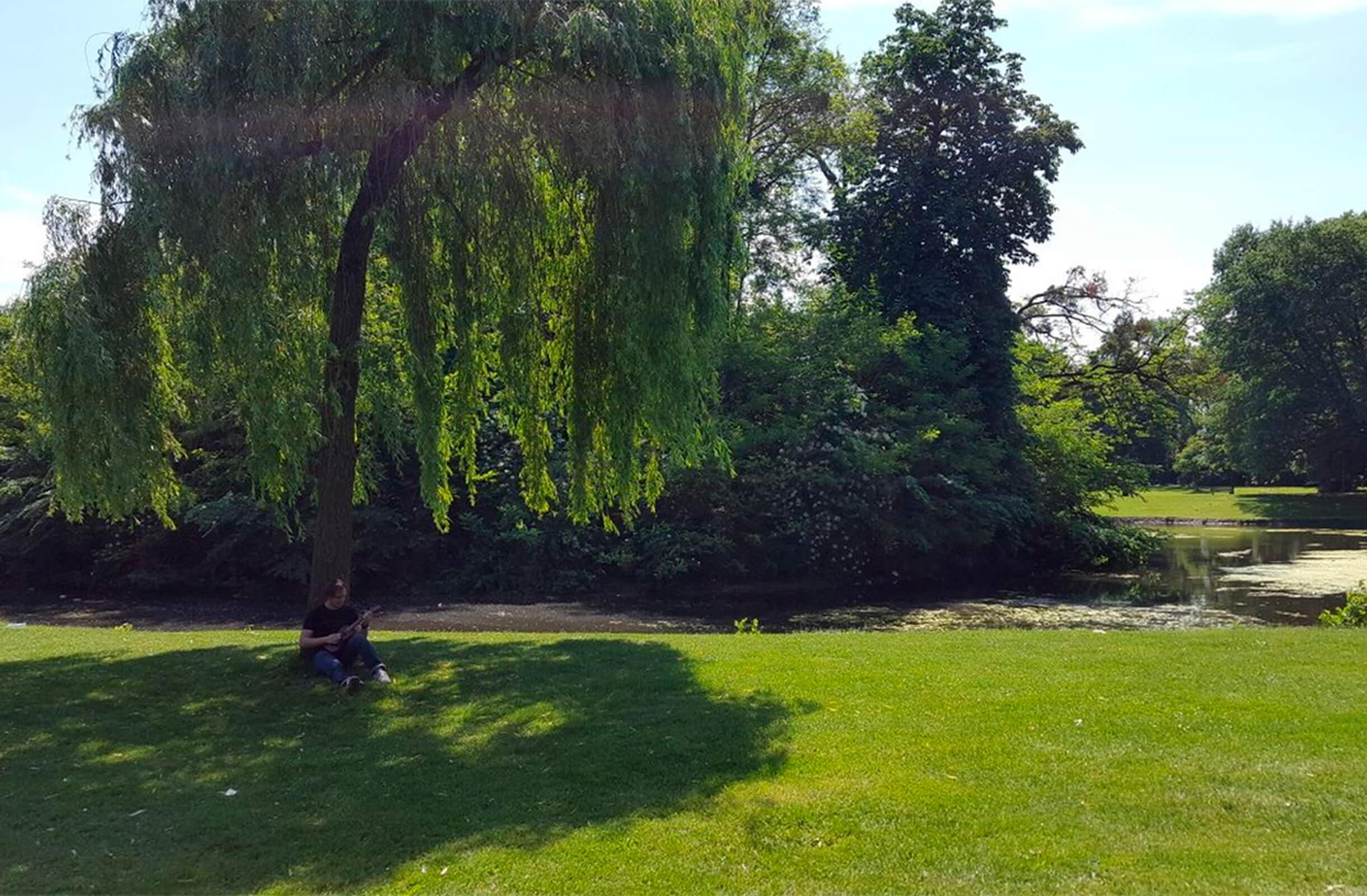 Парк, в который мы часто ходим летом