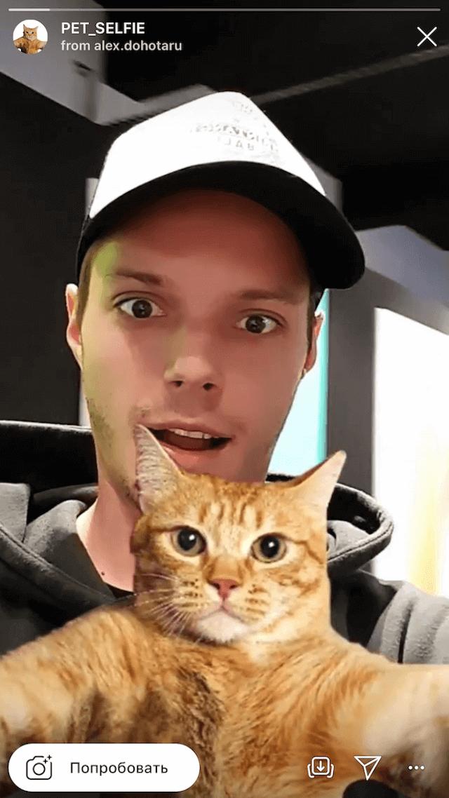 Маска, благодаря которой можно сделать селфи с котом
