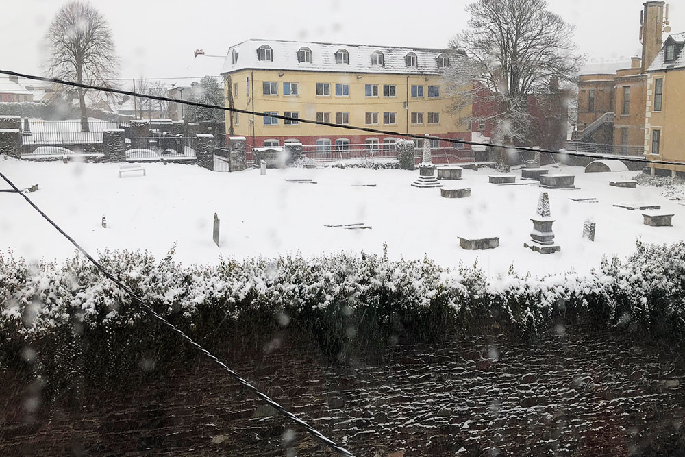 Даже наше дворовое кладбище снегом занесло