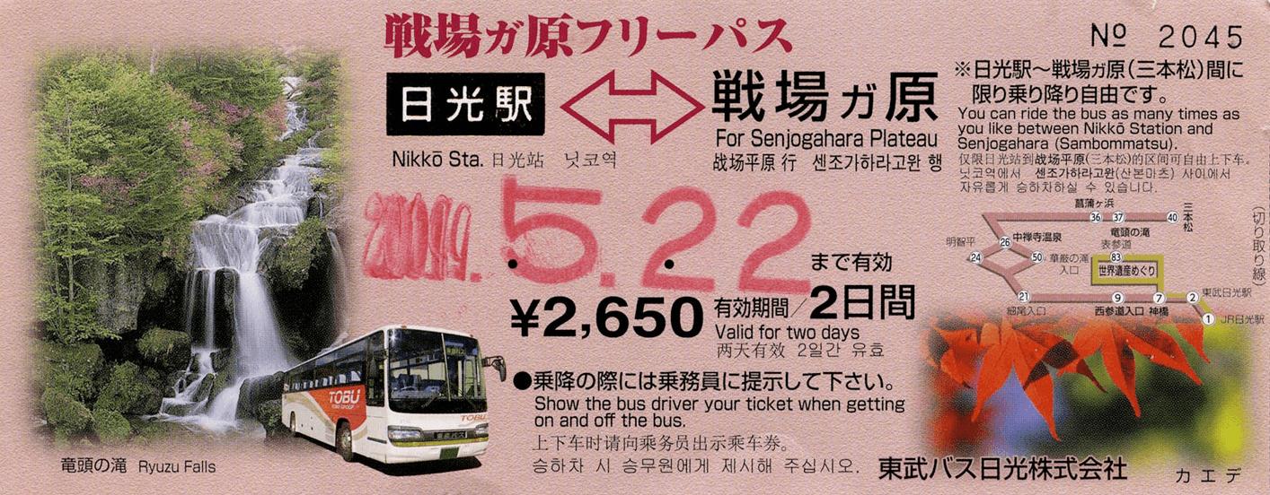 Двухдневный проездной на автобус. Для проезда достаточно показать его водителю