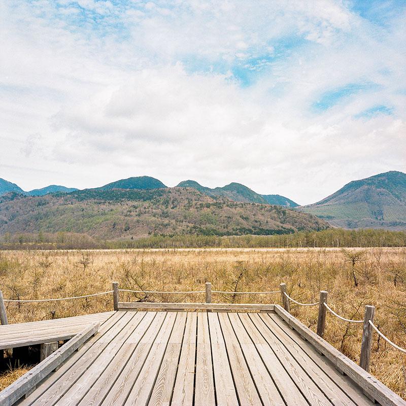 Сэндзёгахара. По сути, это живописное болото с проложенной по нему деревянной мостовой