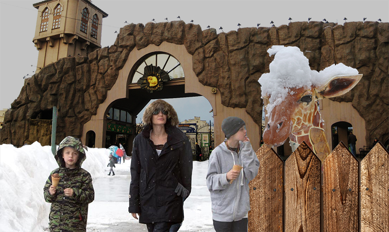 Анджелина с детьми в Московском зоопарке