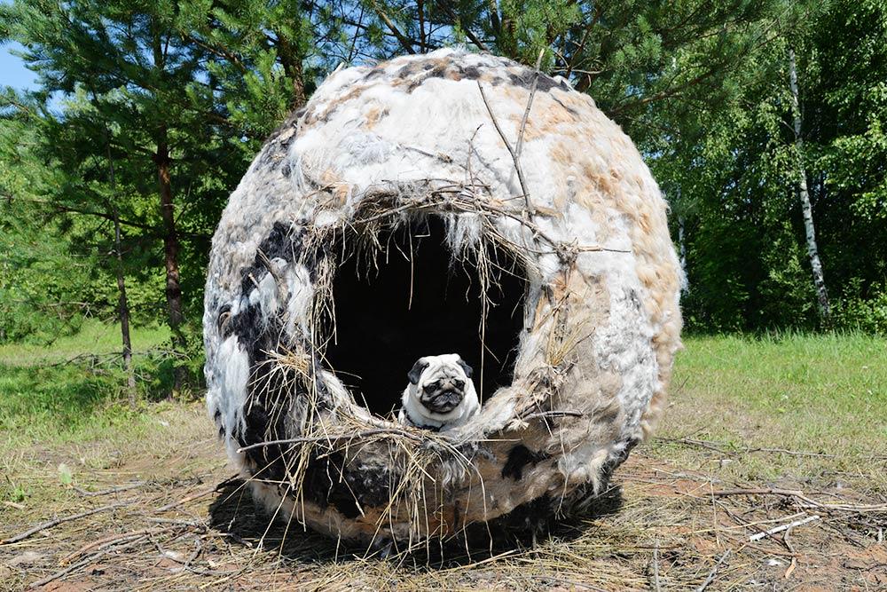 Такой арт-объект был на «Архстоянии-2016». Это гнездо из веток и собачьей шерсти. Внутри было очень тепло, но после фестиваля его разобрали