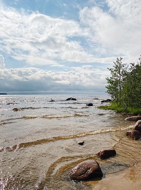Ладожское озеро непокорное и холодное, но на его берегах раскинулись песчаные пляжи невероятной красоты