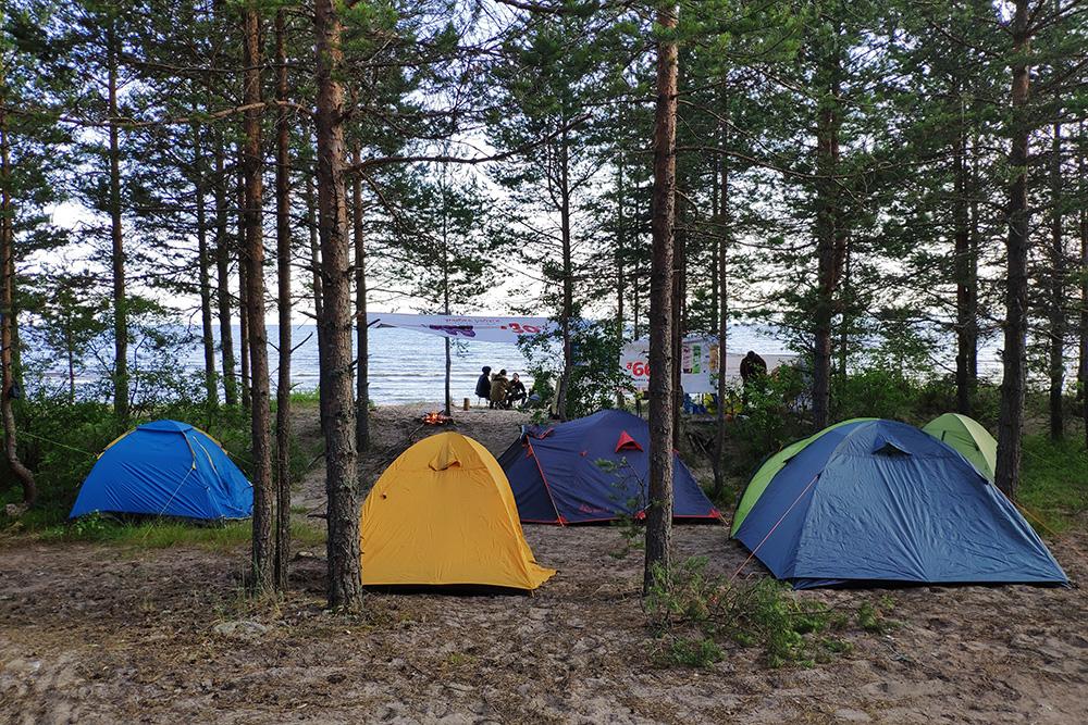 Наш палаточный лагерь на берегу Ладожского озера летом 2019 года