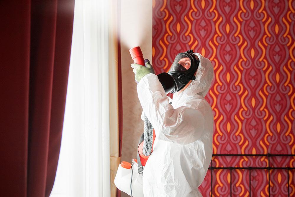 Если у дезинсектора есть установка горячего тумана, это большой плюс. Такой прибор превращает отравляющее вещество в мелкодисперсную пыль, которая проникает во все щели. Источник: Parilov / Shutterstock