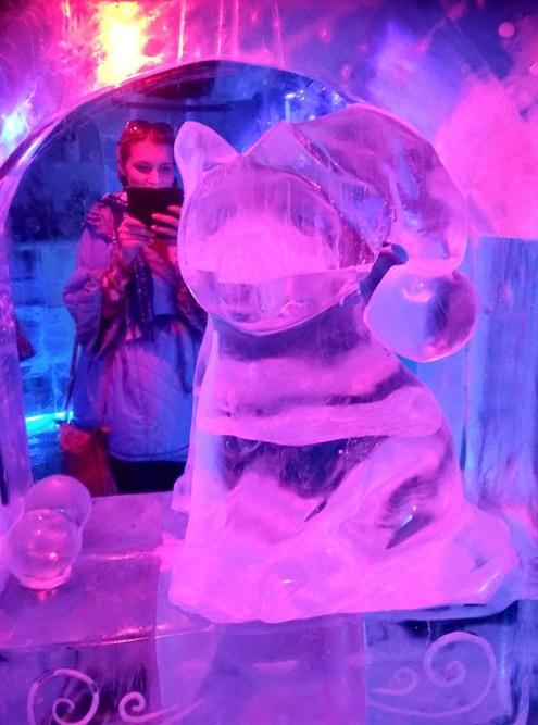 Скульптуры в ледяной комнате сделаны из прозрачного и очень чистого озерного льда