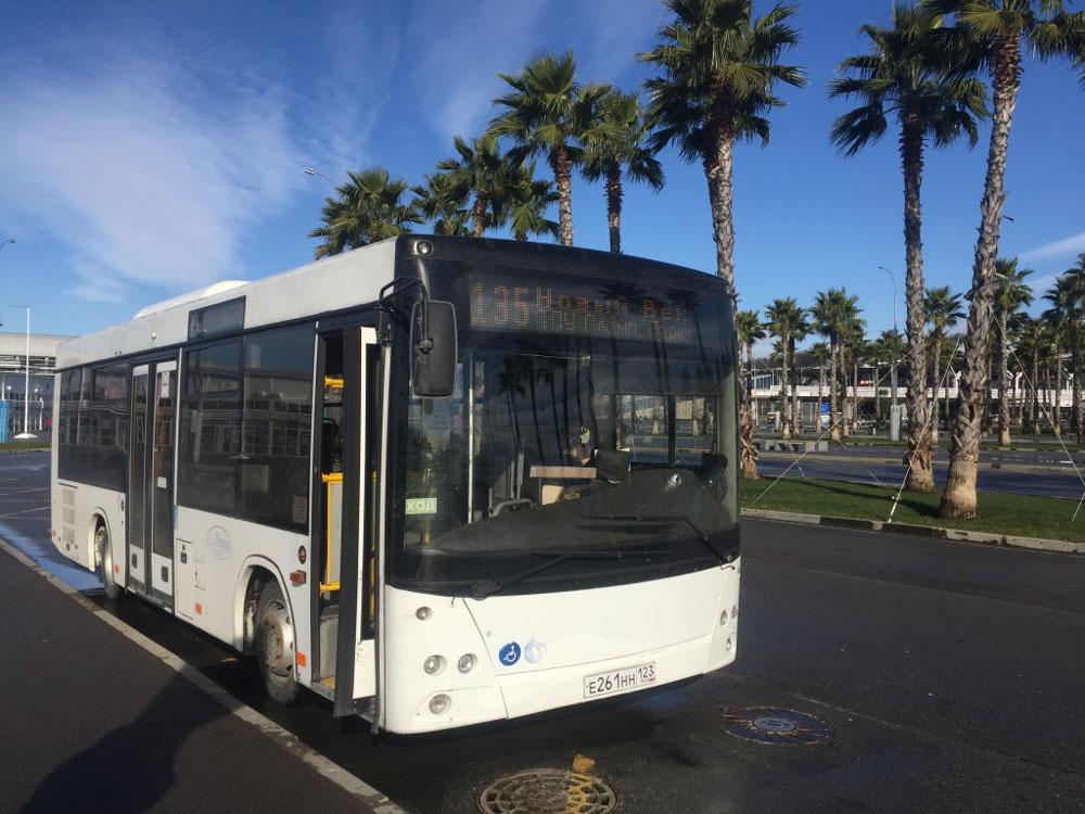 На автобусе № 135 можно доехать от Олимпийского парка до «Розы хутор» за 187 р.. Правда, это отнимет у вас почти два часа