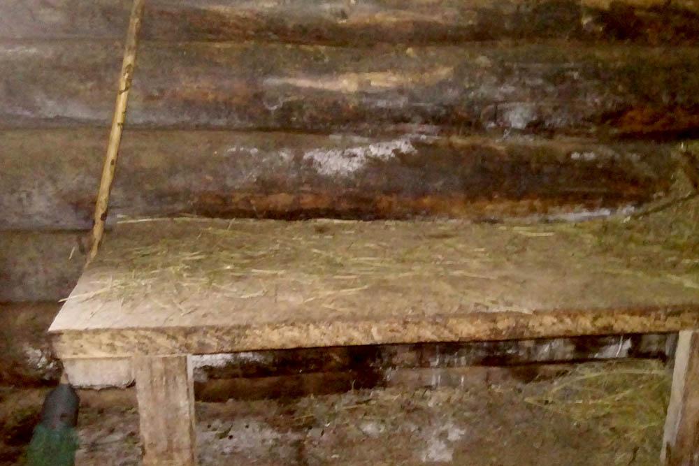 Одна из скамеек в первом хлеву, где мыдоимкоз. Пол вхлеву нужно тщательно подметать
