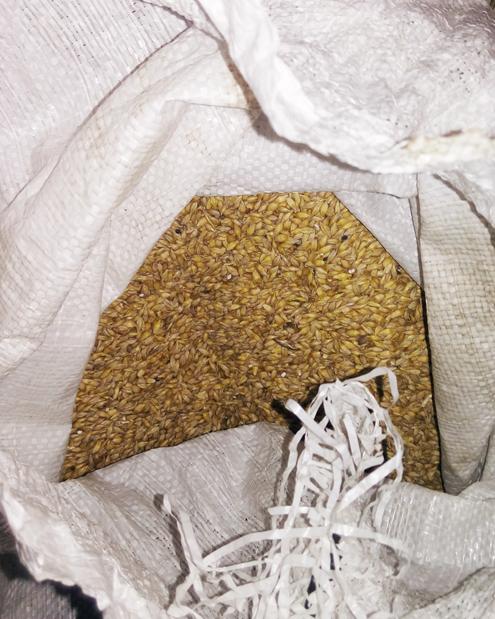 Мешок с пшеницей. Вмагазины нашего райцентра ее привозят из других регионов