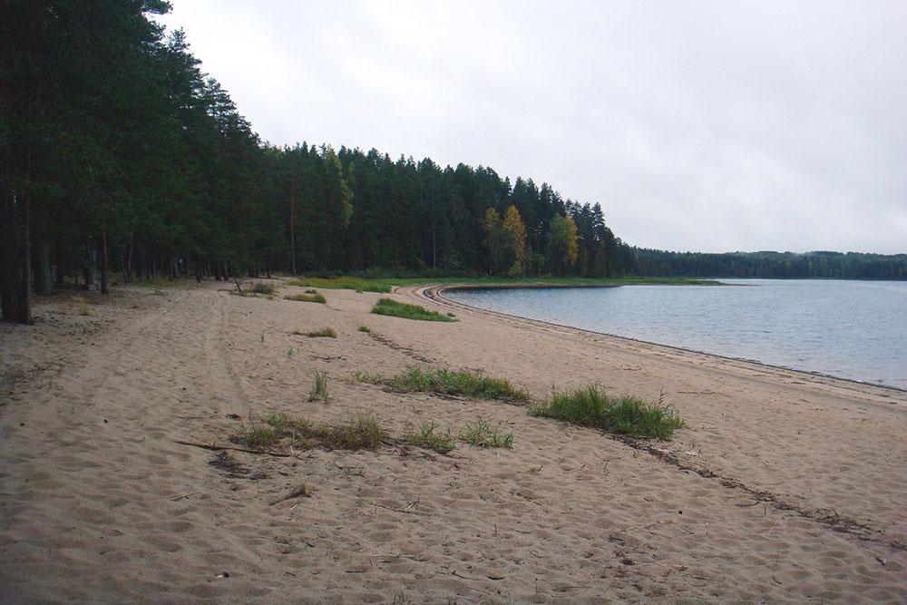 Озеро Городно с широкими песчаными берегами: летом тут здорово купаться, а осенью и весной — прогуливаться и наслаждаться видами