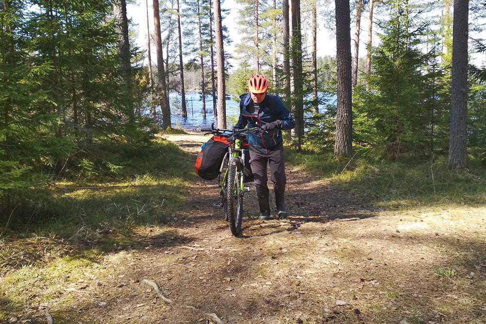 Я ношу шлем даже в лесу. Он спасает от ударов веток, если приходится пробираться через кусты и поваленные деревья