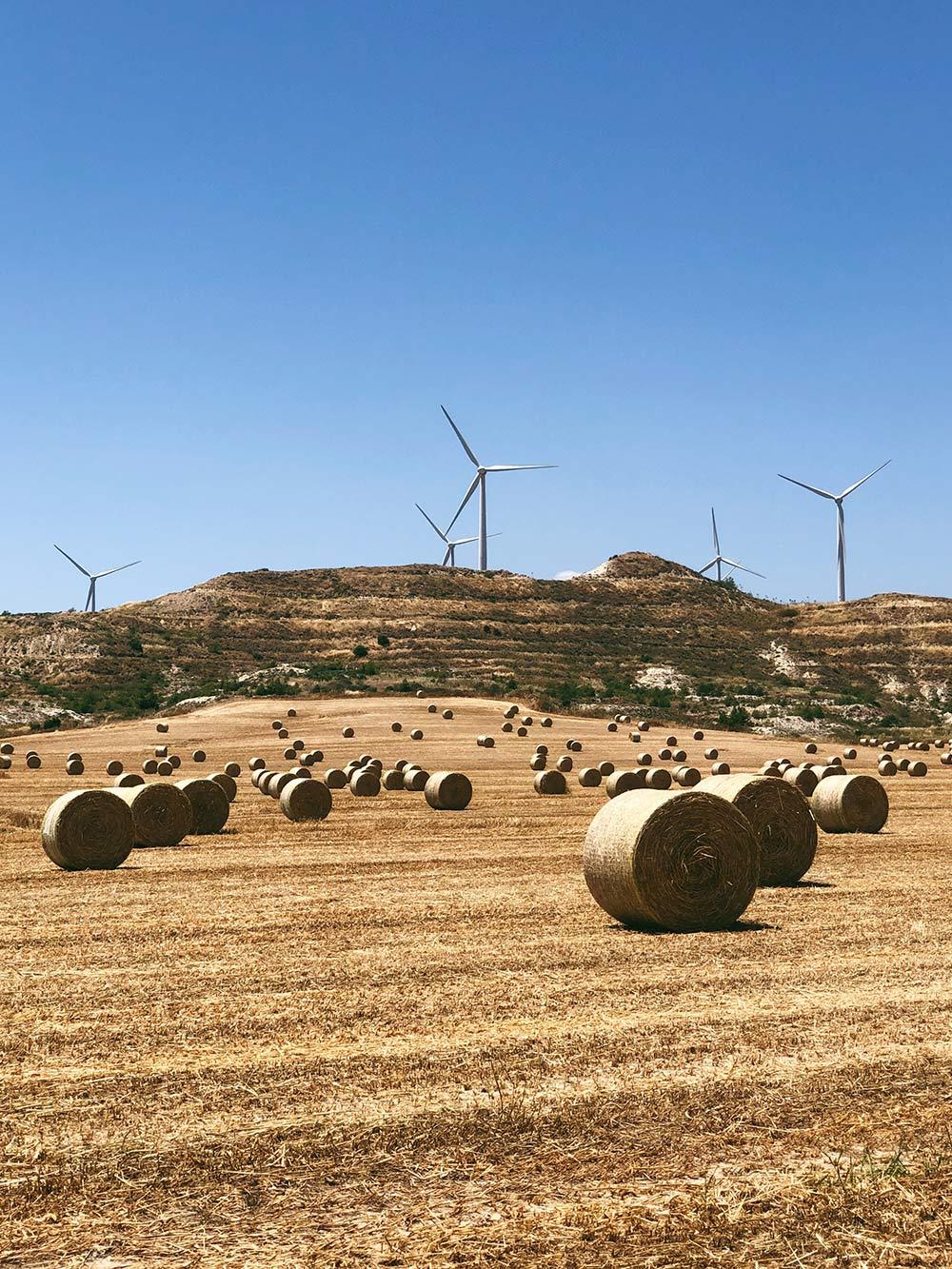 ПодЛарнакой — классные ветряки, а в конце весны — вот такое сено