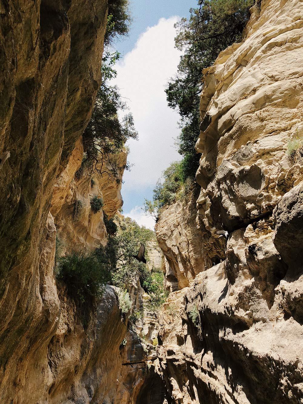 На полуострове Акамас есть красивое ущелье Авакас