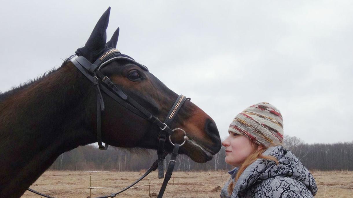 Сколько стоит завести лошадь