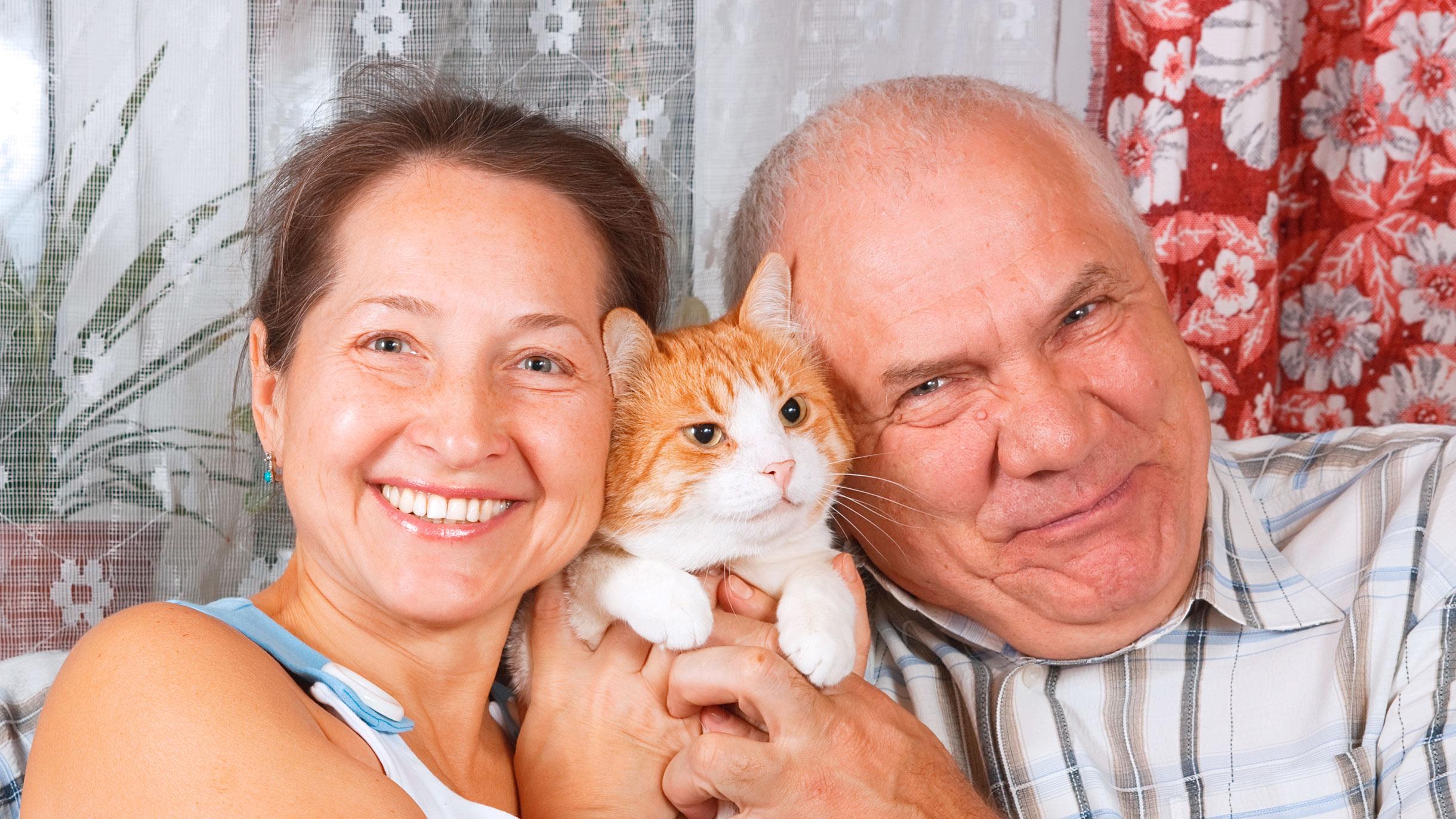 Пенсионерам разрешили отдаватьдолги в рассрочку. Какэтоработает