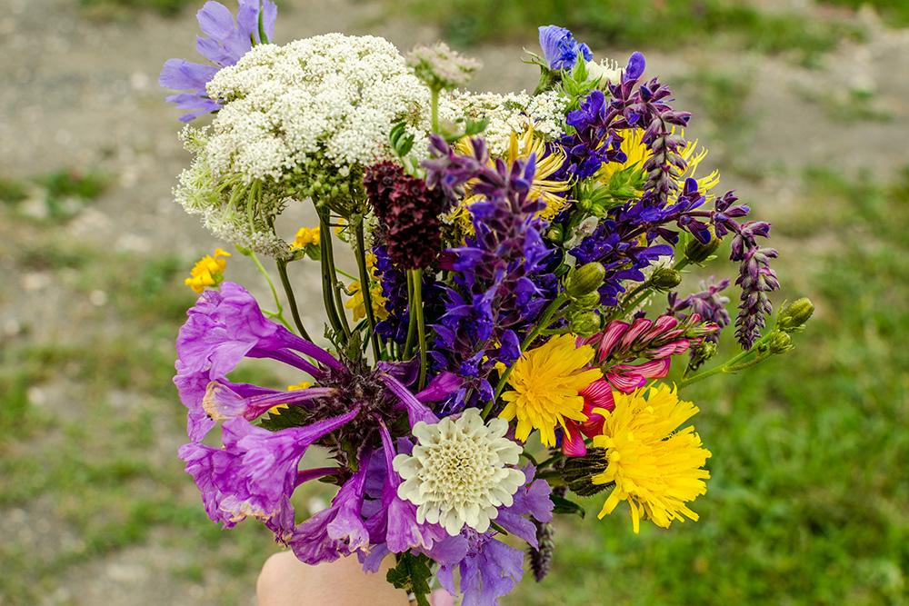 Фото букета изгорных цветов прошло на«Дримстайм» и«Депозитфотос»