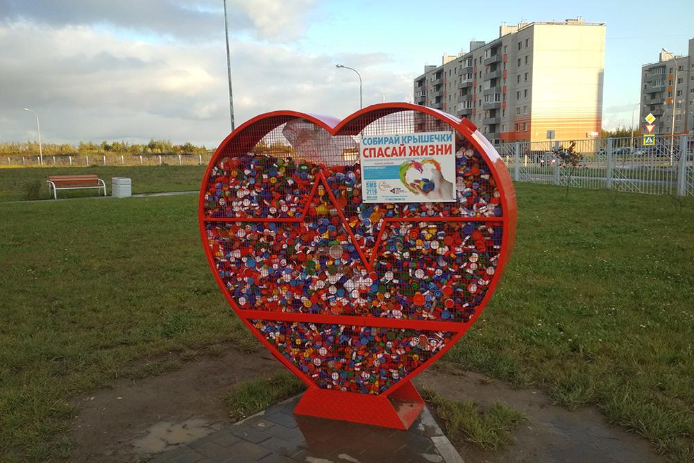 Крышки от пластиковых бутылок я бросаю в такие «сердечки», которые волонтеры установили в нашем городе. Средства от сдачи крышек в переработку направляются на помощь тяжелобольным детям