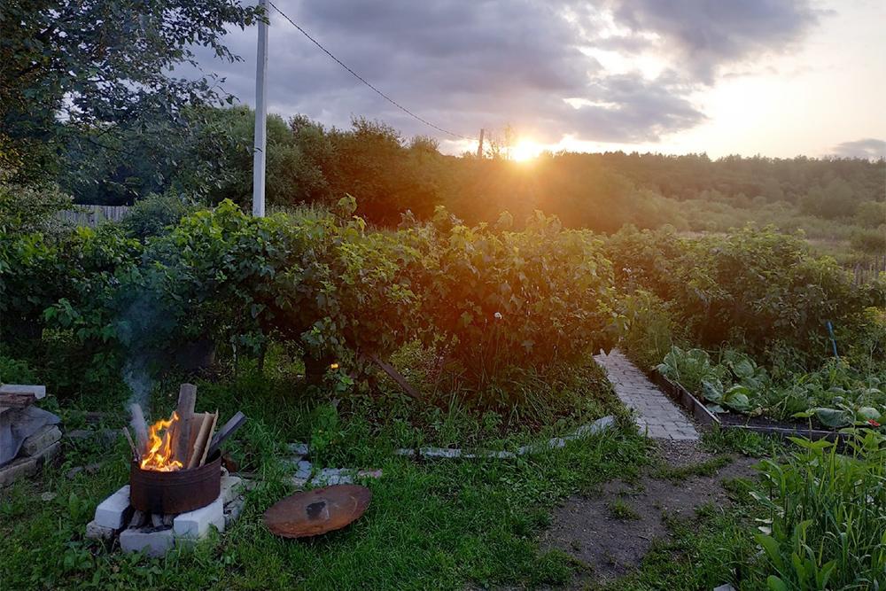 Кусочек нашего огорода