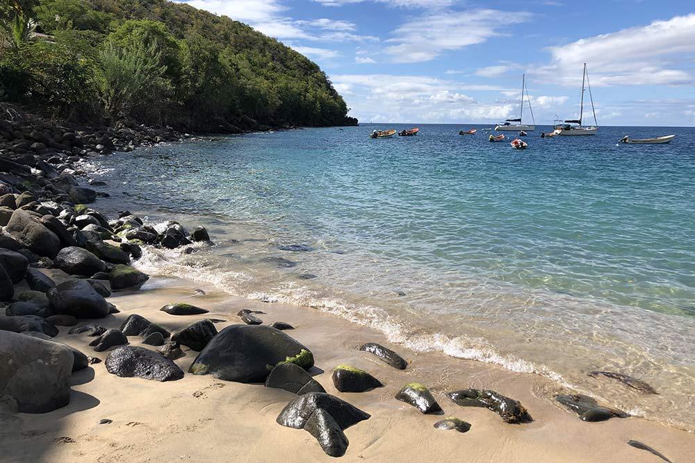 Пляж «Анс-Дюфур» наМартинике. Здесь отлично снорклить: вводе встречаются маленькие черепахи, морские звезды, кальмары икрасивые рыбы