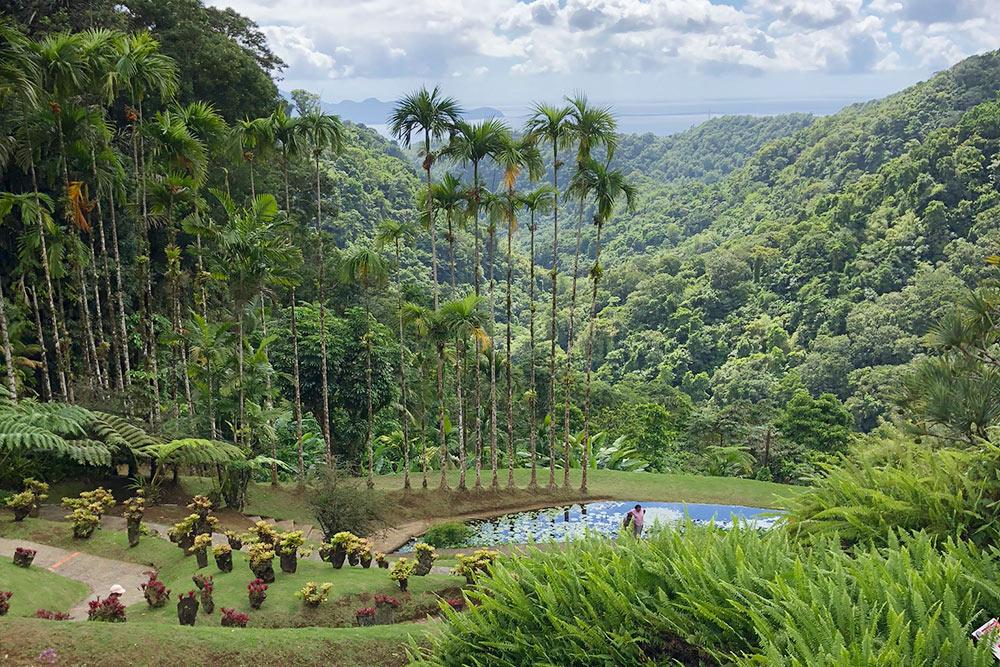 Ботанический сад «Балата» наМартинике