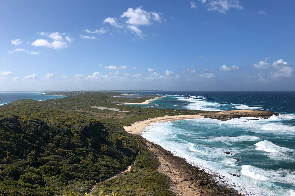 Остров Гваделупа: слева— Карибское море, справа— Атлантический океан