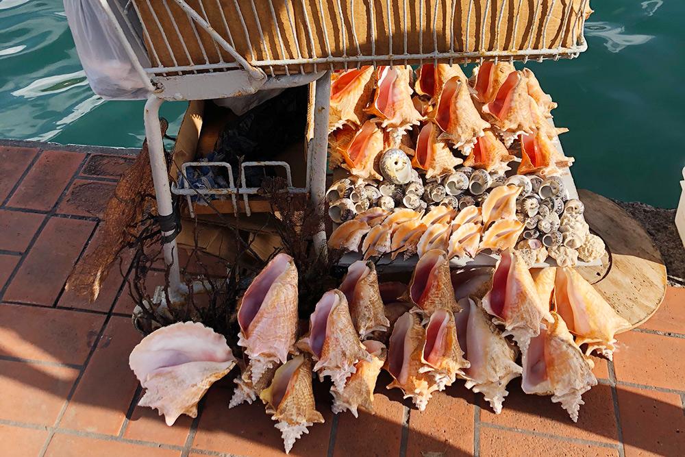 На набережной Сент-Джорджеса вкачестве сувениров продаются раковины