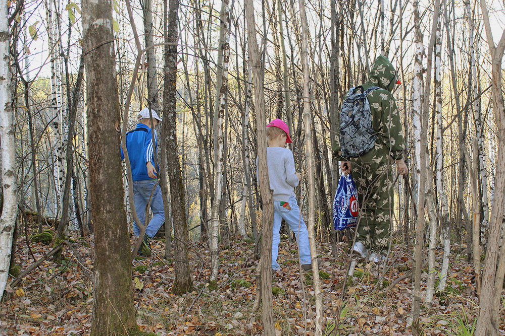 С семьей мы ходим в лес по грибы: собираем маслята, опята и лисички