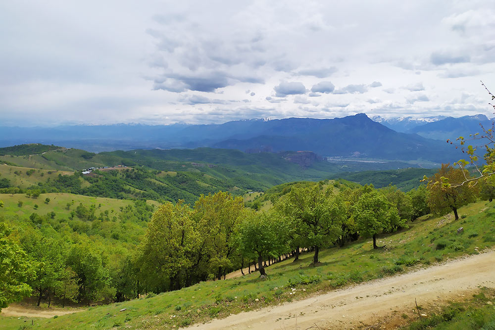 Классические пейзажи в деревне Влахава: зеленые склоны и снежные вершины в дымке облаков на горизонте