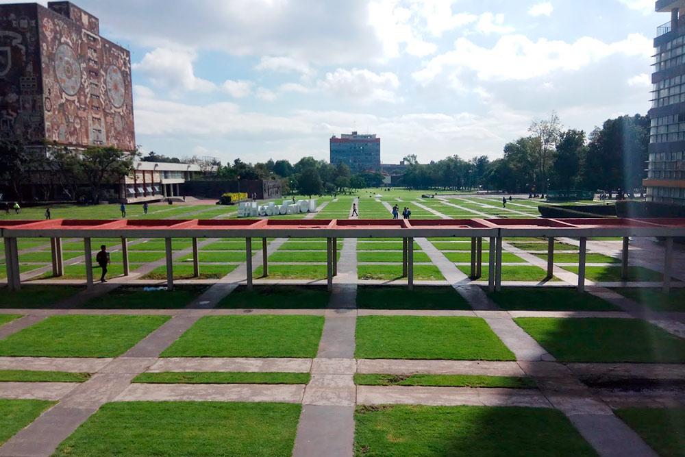 Кампус университета UNAM, рядом с которым мы живем. Я часто гуляю по этому парку с собакой
