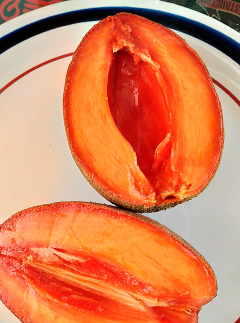 Так выглядит фрукт маммея в разрезе безкосточки. По вкусу он напоминает нечто среднее между персиком и клубникой