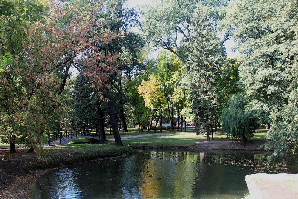 В парке растет 60 видов деревьев и кустарников. Некоторым из них больше ста лет